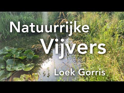 Natuurrijke Vijvers