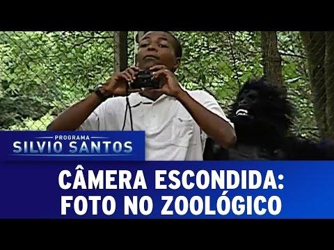 Câmera Escondida (03/07/16) - Foto no Zoológico