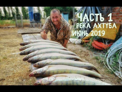 Это лучшая рыбалка! Июнь - река Ахтуба 2019, база ЛЕВАДА, ЛОВЛЯ ТРОФЕЙНОГО СУДАКА! Лодка БЕСТЕР 450