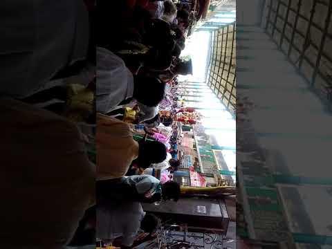 Panguni ursavam @ vada palani temple