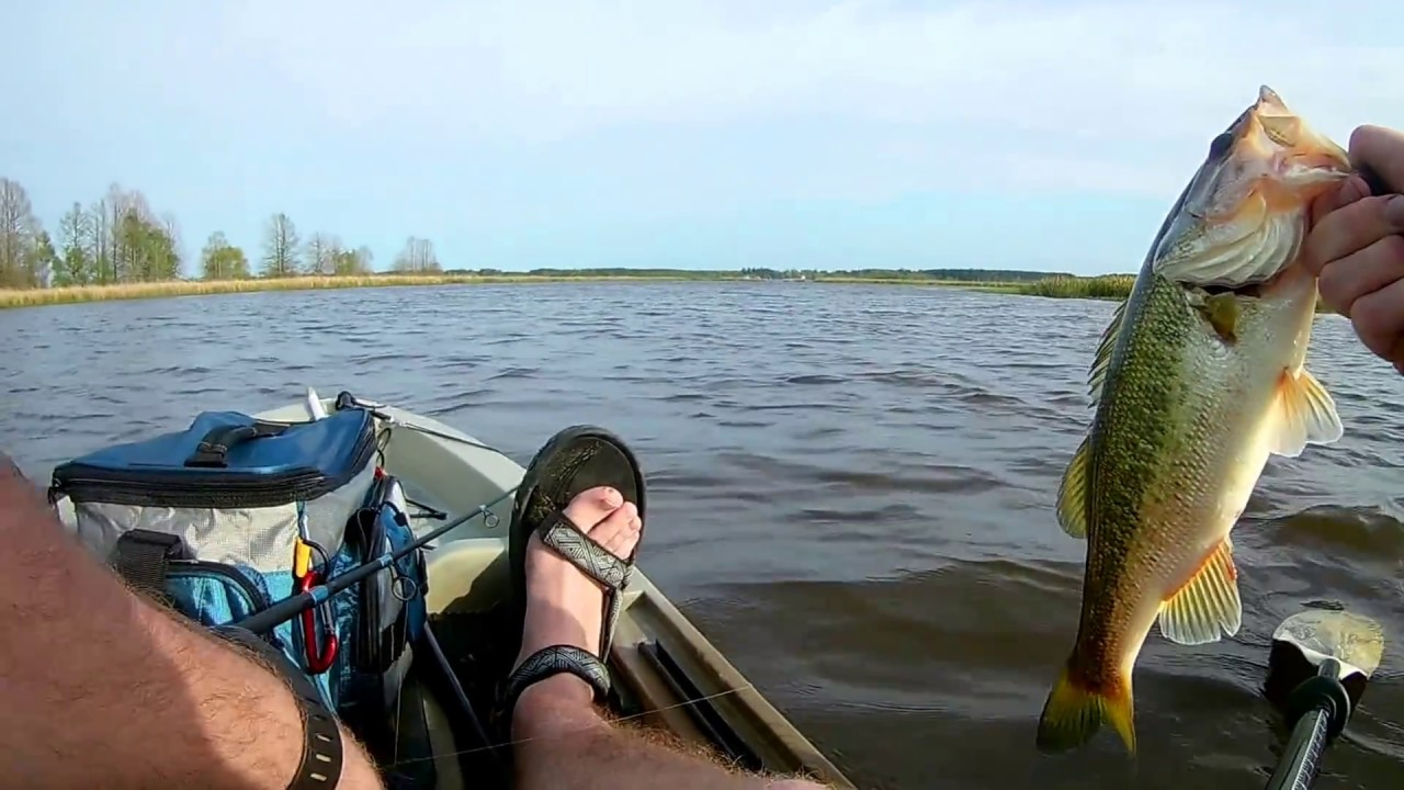 Kayak fishing for bass on ross barnett reservoir near 43 for Ross barnett fishing report