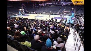 Lakers vs the Hornets Pregame, Live with DTLF!! thumbnail