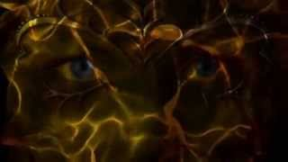 Sia / Rihanna - Diamond Chandelier (Lyrics and Visuals)