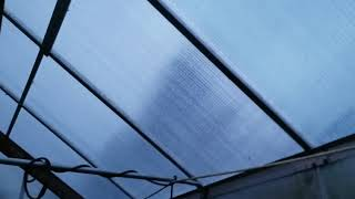 New Harbor Freight Greenhouse Panels