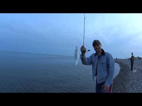 rockfish 2016 Сочи ловля ставриды 22 мая имеретинка ч 1  Игорь Зинковский
