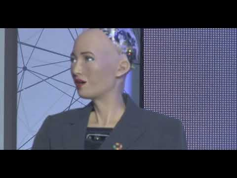 Social Humanoid Robot Sophia in Armenia