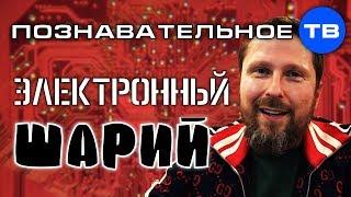 Электронный контроль Шария Познавательное ТВ Артём Войтенков