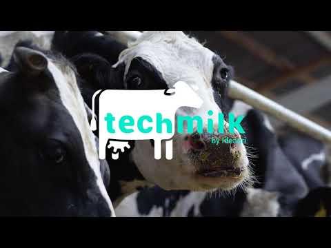 Treinamento Techmilk