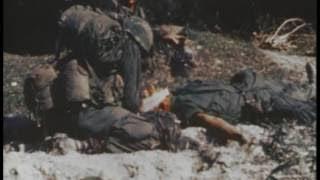 Jungle Warfare Training in Panama During the Vietnam War 1966 US Army