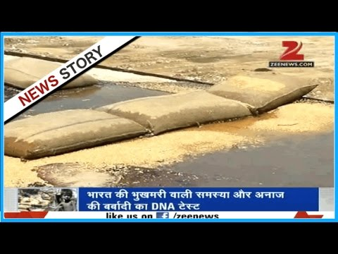 DNA: Malnutrition in India and FCI's negligence toward storing food grains