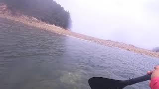 만리포 천리포 패들보드 섬 투어