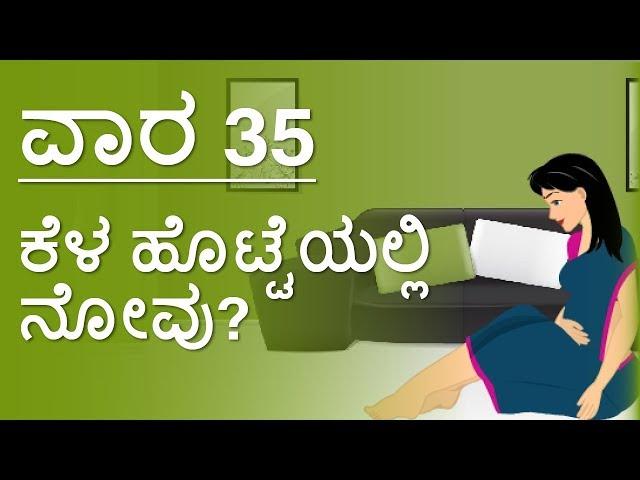 The Pregnancy | Kannada | Week by Week | Week 35