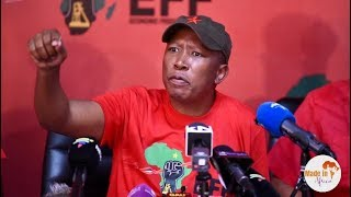 Julius Malema sends a strong message to Mnangagwa on Zimbabwe