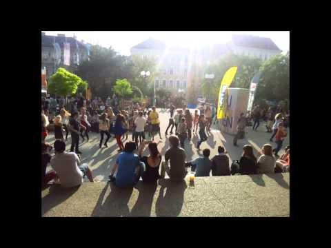Wirtschaftsuniversität Wien - Flashmob 08.05.2013