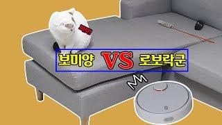 보미양vs로보락군: 고양이가 있는 거실에서 로봇청소기를…