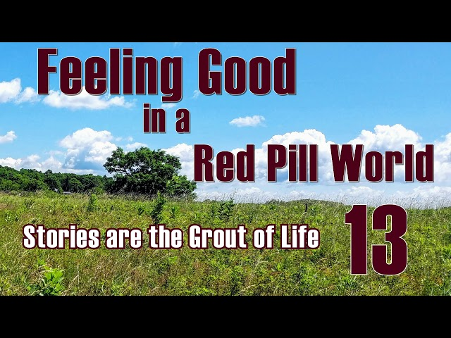 Feeling Good in a Red Pill World - Stories are the Grout of Life