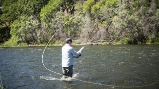 Trout Spey Dry Fly Teaser