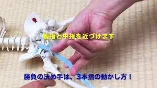 """""""大腿直筋""""の動きがすぐ分かる 筋肉の動きを学ぶ シリーズ1"""