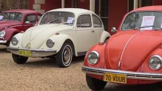 Andy Roberts' Volkswagen Family Picnic Day