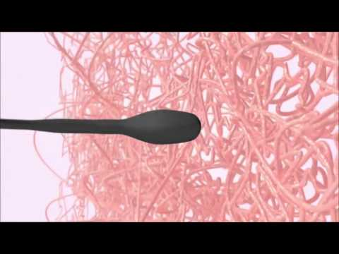 An excellent video on ovulation  2017