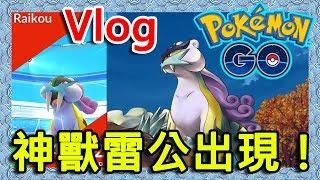 【Pokemon Go】|神獸Raikou雷公出現!|可是...|RoMeow 儸密貓