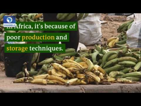 Eco@Africa Ep.6: Recycling Waste In Gabon