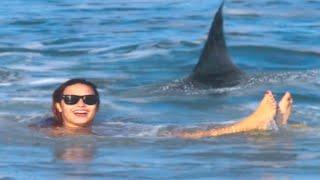 15 Most Dangerous Ultimate Close Calls In the Sea 2