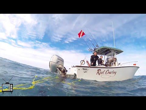 ENTV - FGCU Sports Club Spotlight: Spearfishing Club