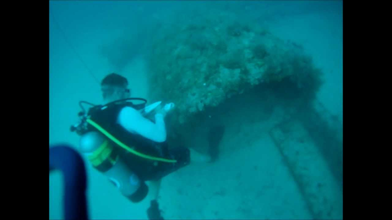 Diving M16 Reef Venice Florida