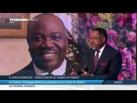 Gabon - État de santé d'Ali Bongo, l'ambassadeur du Gabon en France répond à TV5MONDE