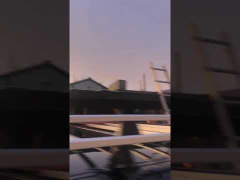 山菜ハンター中江です!2018年11月14日朝6時に虹がくっきり見れました🌈🤓👌