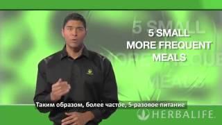 Программа пяти разового питания Гербалайф