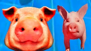СИМУЛЯТОР СВИНЬИ 🐷🐽🐷 Поросенок бегает, все ломает, играем со свиньёй Simulator Pigs