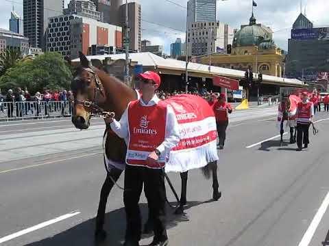 rogan josh / paris lane / melbourne cup parade / horse racing