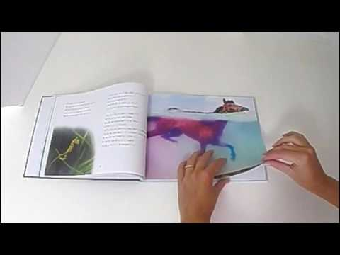 children's book with beautiful underwater photography