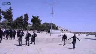 مصر العربية | مستوطنون إسرائيليون يقتحمون المسجد الأقصى