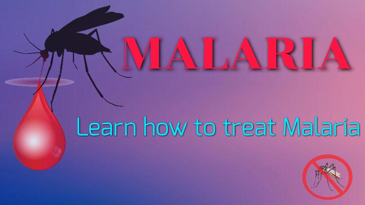 a plazmodium malária átterjedésének fő útja