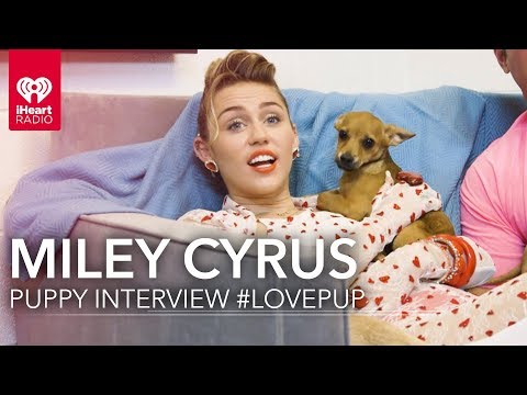 Miley Cyrus Puppy Interview! | #LovePup with Johnjay