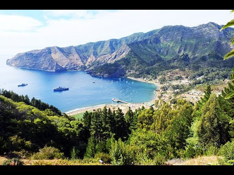 Juan Fernández Islands | Marca Chile Video Post