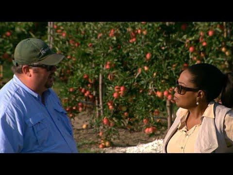 Michigan farmer tells Oprah how he