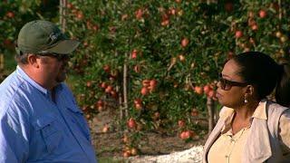 Michigan farmer tells Oprah how he'd advise Trump on immigration