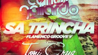 Carlos Gallardo feat Toni Cruz presents Flamenco Groove V - Sa Trincha (Preview)