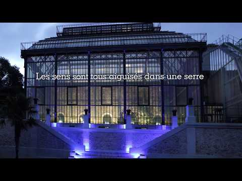 Grandes Serres Du Jardin Des Plantes Greenhouses Muséum