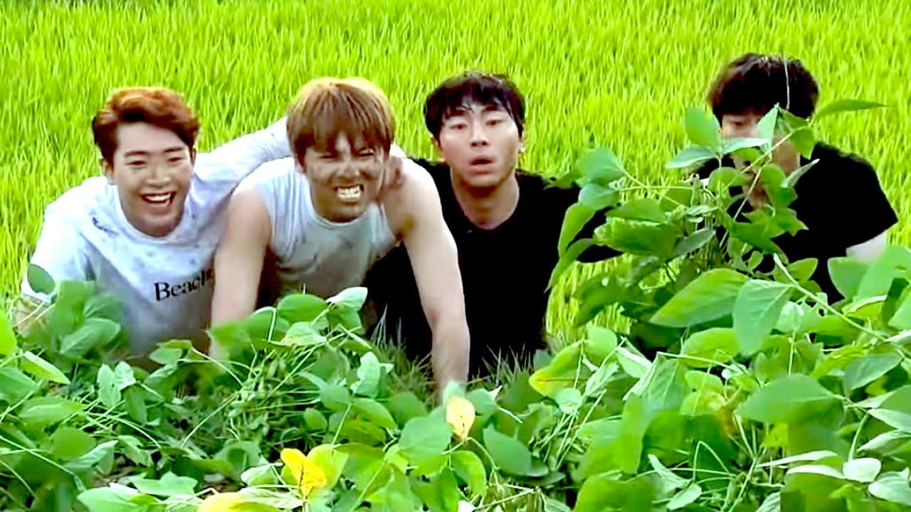 Modern Farmer New 2014 Korean Drama Reviewed! - YouTube  Modern