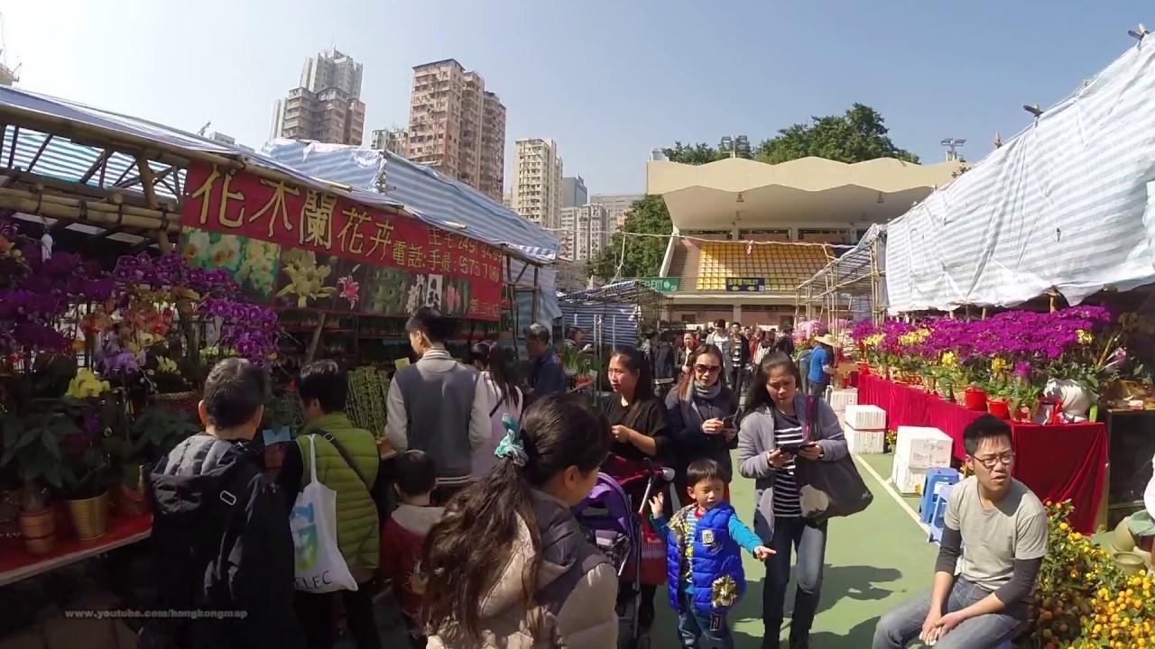 Download 2017-Jan-22 香港農曆新年 Hong Kong Chinese Lunar New Year Pre-Walk 2017 - 荃灣 Tsuen Wan