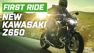 Kawasaki Z650 First Ride Impression | Visordown.com
