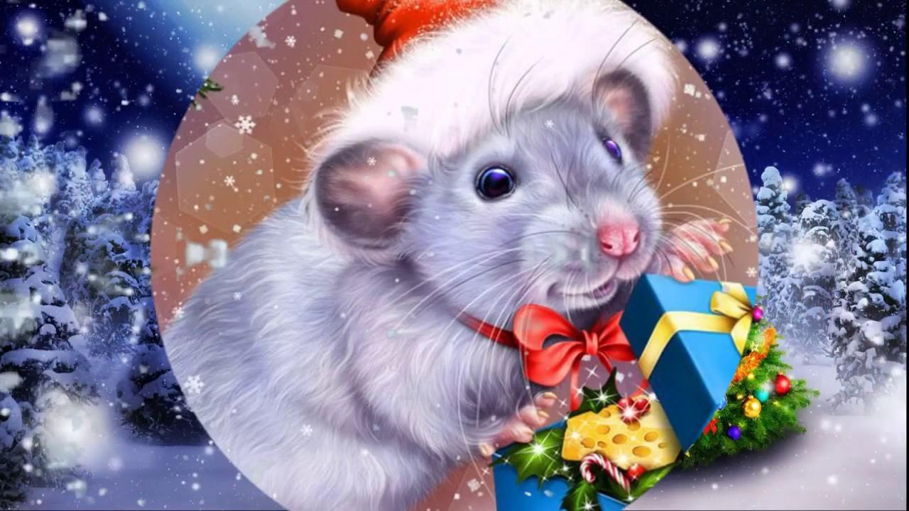 Поздравление с новым годом от лица крысы