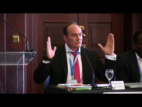 PANEL IV: Transnational Criminal Law in Africa