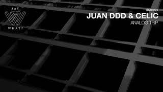 Juan Ddd, Celic - Analog Trip (Original Mix)