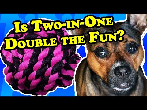a-ball-and-a-rope-in-one!---dog-toy-reviews-|-multipet-nuts-for-knots-ball